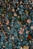 Vetro blu Fotografia Stock