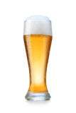 Vetro con birra Fotografie Stock