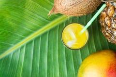 Vetro con il succo di frutta tropicale di recente schiacciato con Straw Pineapple Coconut Mango su grande foglia di palma verde V fotografia stock