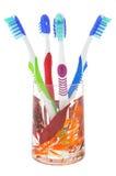 Vetro decorativo del dispositivo di venipunzione dei quattro toothbrush Fotografia Stock Libera da Diritti