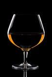 Vetro del bicchiere da brandy Fotografia Stock