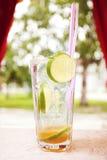 Vetro del cocktail Fotografie Stock Libere da Diritti
