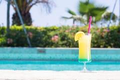 Vetro del cocktail felice di giorni vicino allo stagno Immagine Stock Libera da Diritti