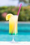 Vetro del cocktail felice di giorni vicino allo stagno Fotografia Stock