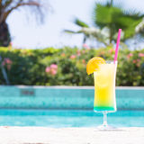 Vetro del cocktail felice di giorni vicino allo stagno Immagine Stock