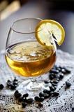 Vetro del cognac Immagini Stock Libere da Diritti