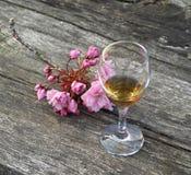 Vetro del cognac e dei fiori Immagini Stock