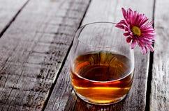 Vetro del cognac e del fiore Fotografie Stock