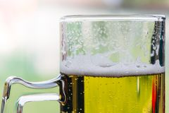 Vetro del primo piano della birra Fotografia Stock Libera da Diritti