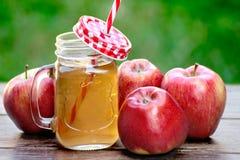 Vetro del succo di mele e delle mele rosse Immagine Stock Libera da Diritti