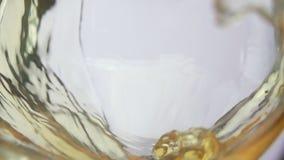 Vetro del vino dell'uva bianca stock footage