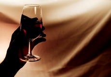 Vetro del vino rosso Fotografie Stock