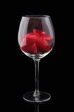 Vetro del vino rosso con i petali Fotografia Stock