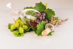 Vetro del vino rosso con l'uva e le foglie di vite Fotografia Stock