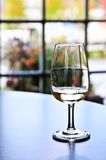 Vetro dell'assaggio di vino Fotografia Stock Libera da Diritti