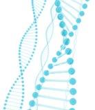Vetro dell'azzurro del DNA Fotografia Stock Libera da Diritti