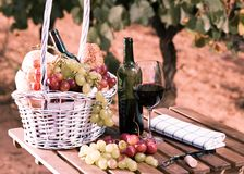 Vetro dell'uva del vino rosso e del canestro di picnic sulla tavola nel campo Fotografia Stock