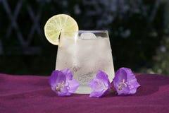 Vetro della bevanda fresca fredda Fotografie Stock Libere da Diritti