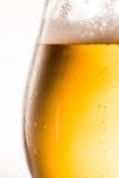 Vetro della fine della birra in su immagini stock