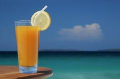 Vetro della spremuta del mango con la torsione del limone e della paglia. Fotografia Stock