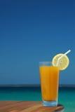 Vetro della spremuta del mango con la torsione del limone e della paglia Fotografia Stock Libera da Diritti