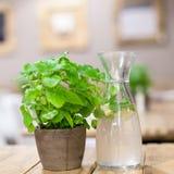 Vetro di acqua con il limone fotografie stock libere da diritti