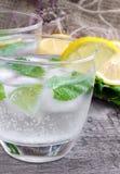 Vetro di acqua frizzante fredda con il limone e la menta Fotografia Stock Libera da Diritti