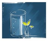 Vetro di acqua, poca pianta verde Fotografia Stock Libera da Diritti