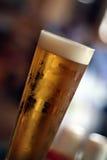 Vetro di birra Immagine Stock