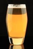 Vetro di birra Immagine Stock Libera da Diritti