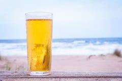 Vetro di birra Immagini Stock Libere da Diritti