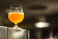 Vetro di birra chiara in una fabbrica di birra Fotografie Stock Libere da Diritti