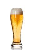 Vetro di birra con alta schiuma immagini stock