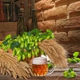 Vetro di birra con il luppolo e l'orzo Fotografia Stock