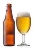 Vetro di birra con la bottiglia Fotografia Stock Libera da Diritti
