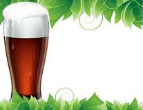 Vetro di birra con le foglie verdi Immagine Stock