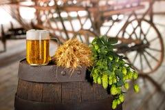 Vetro di birra con orzo ed il luppolo Immagini Stock Libere da Diritti