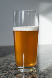 Vetro di birra del mestiere con birra bionda Fotografia Stock Libera da Diritti