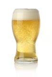 Vetro di birra dorata fredda e fresca Immagine Stock Libera da Diritti