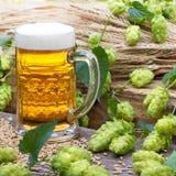 vetro di birra e coni di luppolo Fotografia Stock