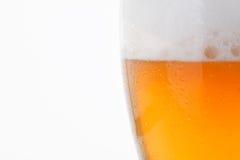 Vetro di birra fredda Fotografia Stock Libera da Diritti