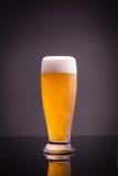 Vetro di birra fredda Fotografie Stock