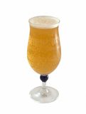 Vetro di birra fredda fresca Fotografia Stock Libera da Diritti