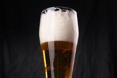 Vetro di birra leggera Fotografie Stock Libere da Diritti