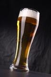 Vetro di birra leggera Immagini Stock Libere da Diritti
