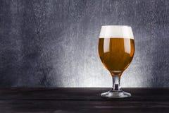 Vetro di birra leggera Fotografia Stock