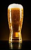 Vetro di birra su oscurità Fotografia Stock Libera da Diritti