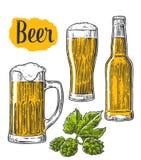 Vetro di birra, tazza, bottiglia, luppolo Vector l'illustrazione incisa annata isolata su fondo bianco Fotografia Stock Libera da Diritti