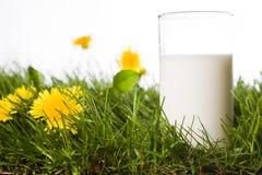 Vetro di latte Immagini Stock