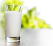 Vetro di latte Immagine Stock